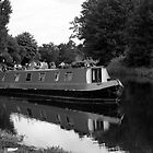 The River Lee, Waltham Abbey UK by Pauline Tims