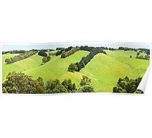 Rolling Green Hills, Gippsland, Australia Poster