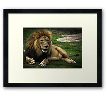 Tell me another  Framed Print