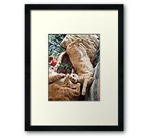Raymond Upside Down Framed Print