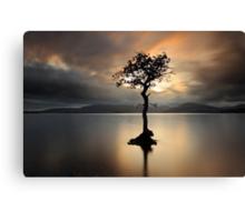 Lone tree on Loch Lomond Canvas Print