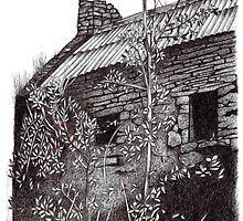 Cottage II by Laura Dumbrell