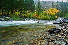 Fall colors by Dan Mihai