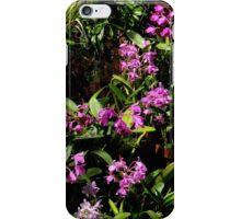 Botanical 2 iPhone Case iPhone Case/Skin