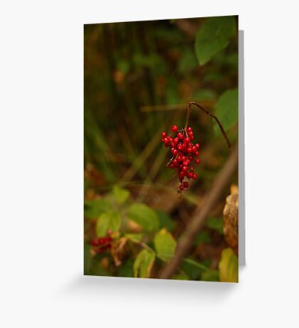 Wild Berries in Forest Greeting Card