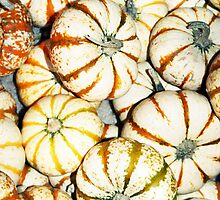 Striped Lil' Pumpkins by JLPPhotos