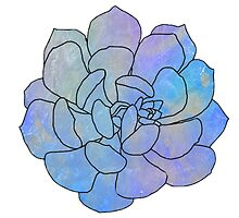 Holograph Succulent by sillyspoons