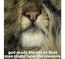 Cat lovers II Postcard by anjafreak
