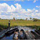 The Okavango Life by skaranec1981