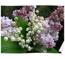 Spring harvest Poster