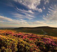 Dartmoor from Lowman by benivory