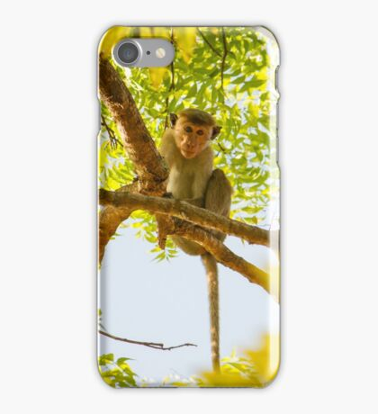 Monkey in a Tree iPhone Case/Skin