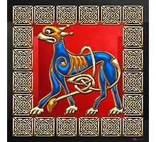 Sacred Celtic Lion on Red and Black Photographic Print