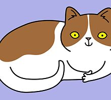 Special Cat... Brown and White by zoel