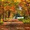 Autumn Landscapes of the East Coast USA