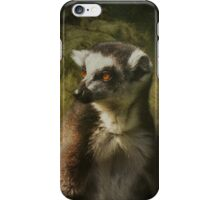 Lemur iPhone Case iPhone Case/Skin