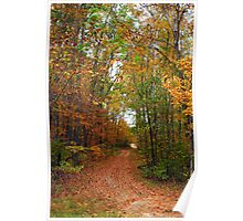 Autumn Trails Poster