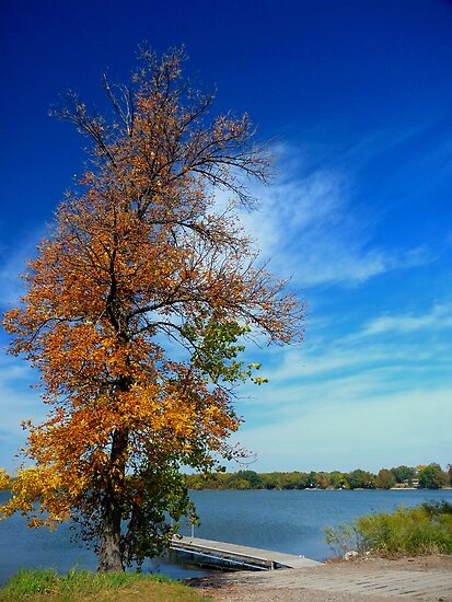 Autumn at Deer Lake by Lucinda Walter