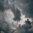 Sky by Barbara Wyeth