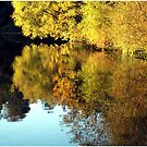 Reflection of Autumn by G.T.S Photos