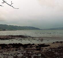 Irish Coastline - Buncrana Panorama by Sarah Cowan