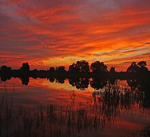 sunset at gordy road pond by cliffordc1