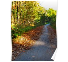 A path of leaves Poster