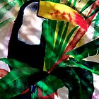 Toucan Exotic Amazon Jungle Bird in the shadows acrylic painting by Rick Short