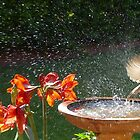This is why I don't have to water the plants at home! by PhotosByG