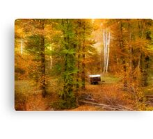 Memories of seasons past Canvas Print