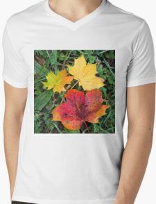 Autumn leaves in wonderful colours Mens V-Neck T-Shirt