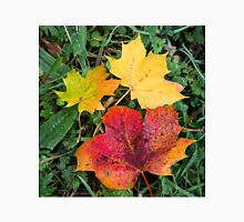 Autumn leaves in wonderful colours Unisex T-Shirt