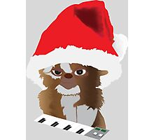 Christmas Gizmo Photographic Print
