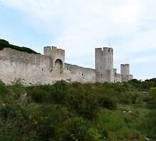 Outside the Visby City Wall by Mark Prior