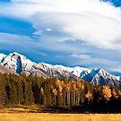 Autumn day in the mountains, Banff AB Canada by camfischer