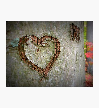 Heart Engraved Photographic Print