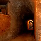 0633 The Tunnel by DavidsArt