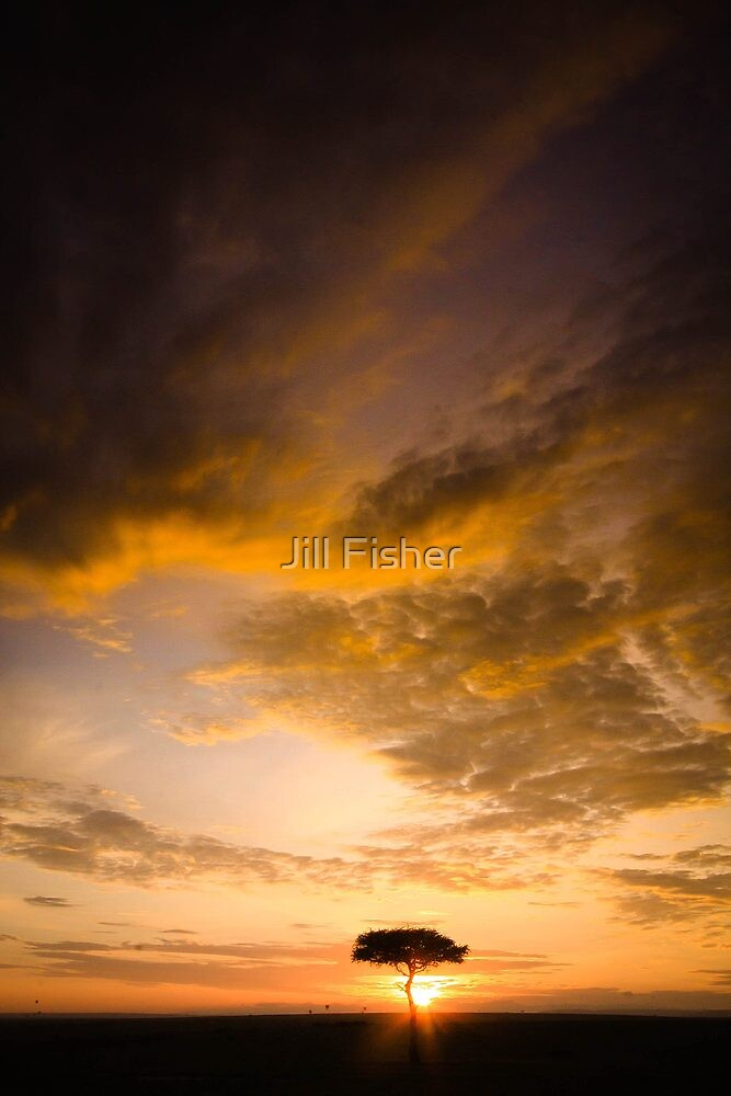 Dawning of a Brand New Day by Jill Fisher