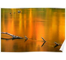 Autumn Reflections on the Holston River Poster