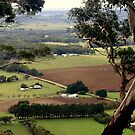 Scenic view from Mt.Buninyoung by Chris Chalk