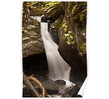 Waterfall In The Rainforest - Alaska Poster