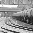 Train Life by crazyman53