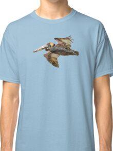 Brown Pelican Flight with Vintage Burgundy Stripe (California Bird) Classic T-Shirt