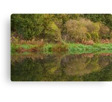 Reflections, River Nene. Canvas Print