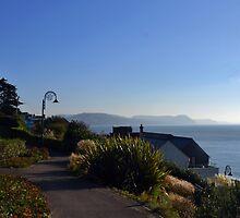 Lyme Gardens 2015-10-12. Dorset UK by lynn carter