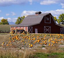 Barn, Wagon, and Pumpkins by Klaus Girk