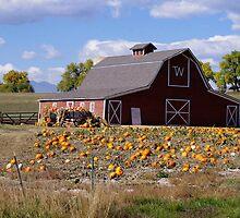 Barn, Wagon, and Pumpkins by Klaus Girk