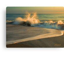 The Beach  Break Canvas Print
