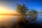 Misty Dawn 1.0 by Yhun Suarez
