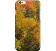 i Fire On The Mountain iPhone Case/Skin